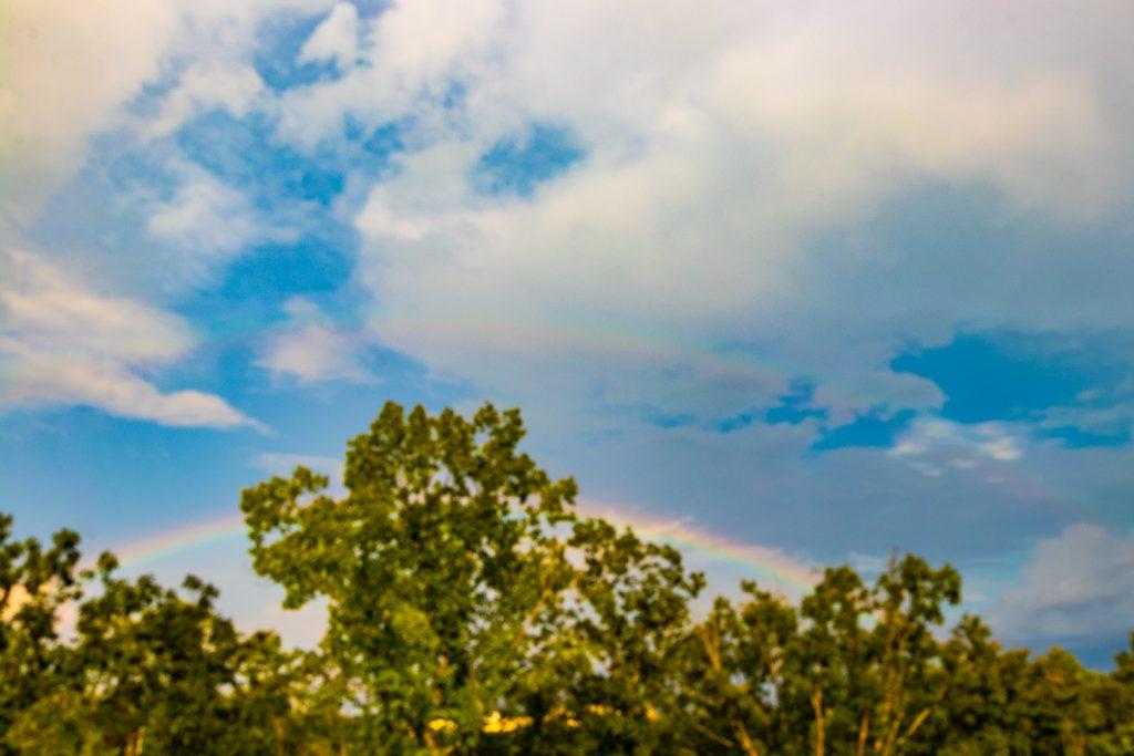 Rainbows-1-1024x683.jpg